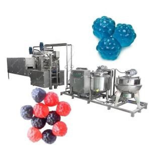 Small capacity CLM 150 automatic gelatin/jelly/pectin/gummy bear candy making machine/soft candy production line in shanghai #3 image