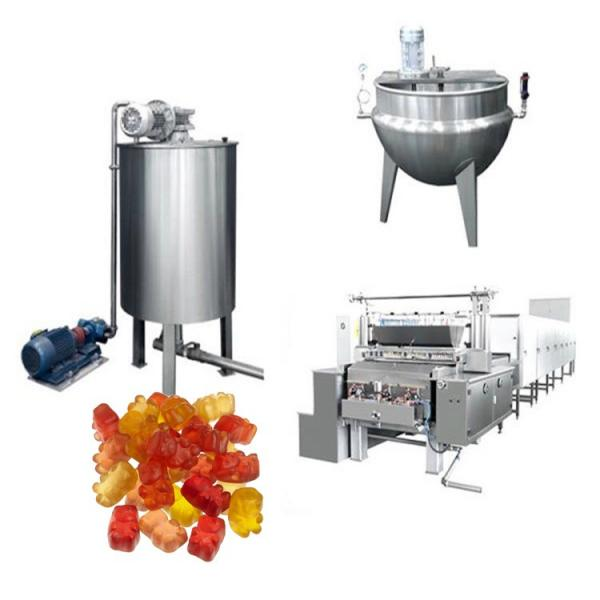 Kh-150/450 Ce Approved Gummy Bear Candy Making Machine #3 image