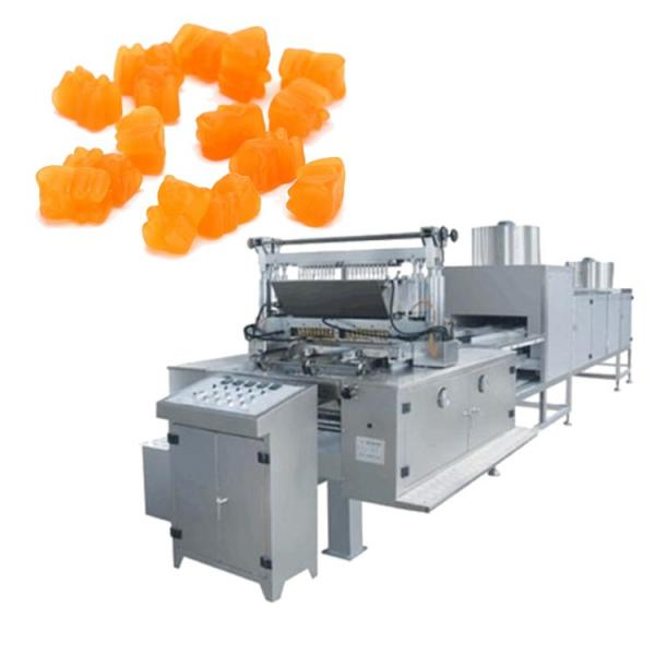 Commercial vitamins Jelly Candy Depositin Line sugar bear gummy make machine make hard and soft candy price from #1 image