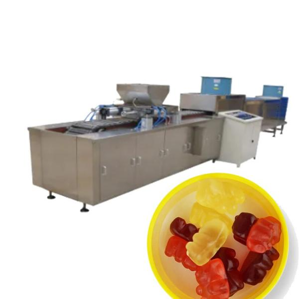 Fruit Gummy Candy Making Machines/Gummy Jelly Candy Depositor Production Line #1 image