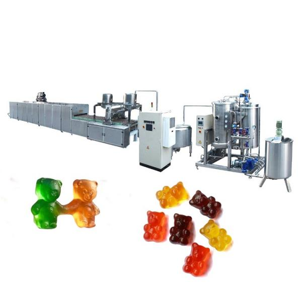 High quality building block jelly candy sweets chinese candy gummy candy maker #1 image