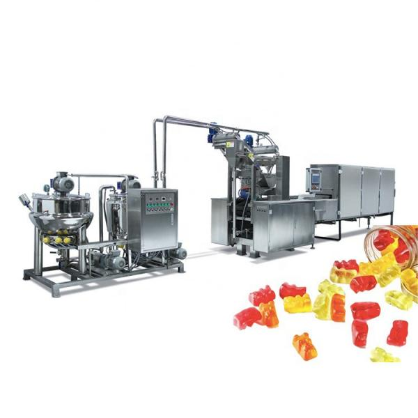 Fruit Gummy Candy Making Machines/Gummy Jelly Candy Depositor Production Line #2 image