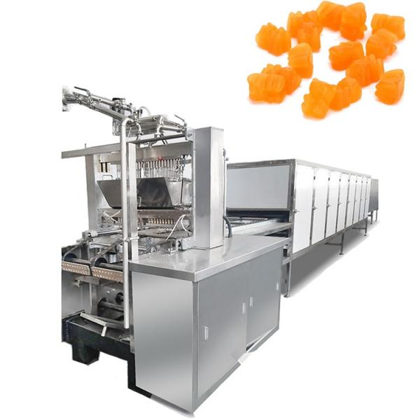 Full Automatically Electric Capsules and Tablets Counting Machine 12 Channel Double Output Automatic Gummy Bear Candy Counting Packing Machine #1 image